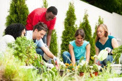 group volunteering; photo from istock